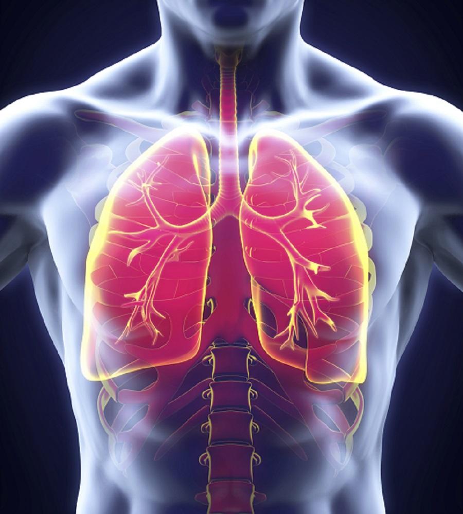 ninitest.com |    چرا کودک ما دچار عفونت ریه (ذات الریه)می شود ؟